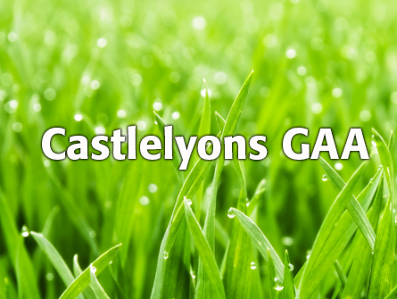 Sponsorship for Castlelyons GAA
